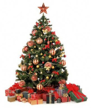 Как выбрать правильно новогоднюю елку